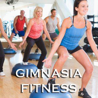Gimnasia - Fitness